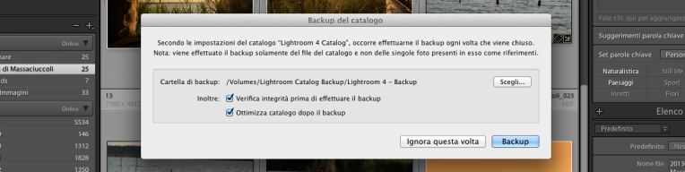 Lightroom-Backup-Catalogo