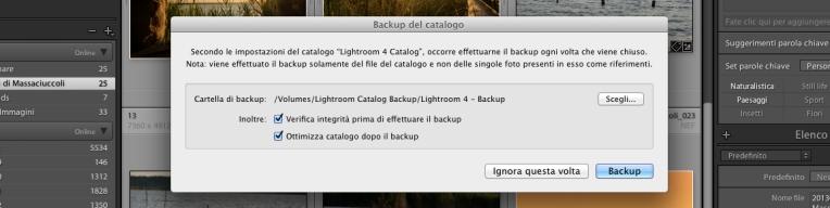 Lightroom-Backup-Catalogo
