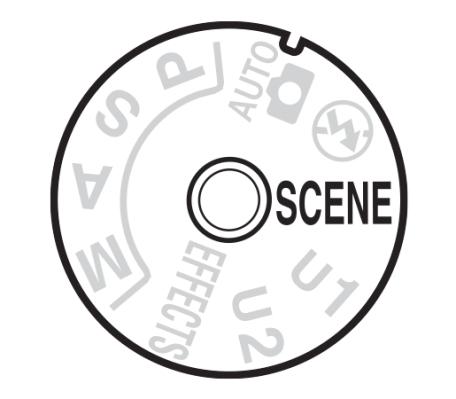 Modi-SCENE-NikonD7100-NikonD7000